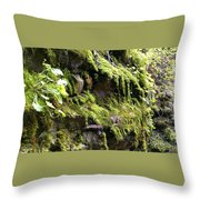 Beauty In The Northwest Throw Pillow