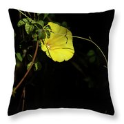 Beauty In The Shade Throw Pillow