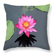 Beauty In Water Throw Pillow