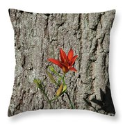 Beauty Is In The Details Throw Pillow