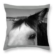 Beauty Is In The Eye... Throw Pillow