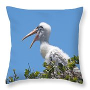 Beauty Is In The Eye Of The Beholder Throw Pillow