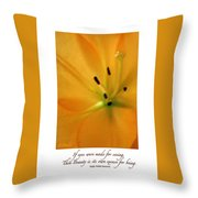 Beauty Is Its Own Excuse Poster Throw Pillow