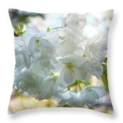 Beauty Is Transcendent Throw Pillow