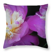 Beauty Is What We Do Throw Pillow