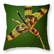 Beauty Marks Throw Pillow