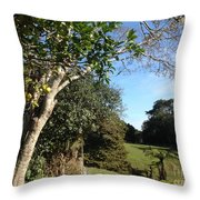 A Country Landscape  Throw Pillow