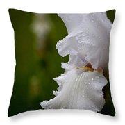 Beauty Of An Iris Throw Pillow