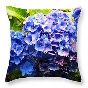Beauty Of Blue. Throw Pillow