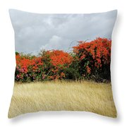 Beauty Of Bougainvillea Throw Pillow
