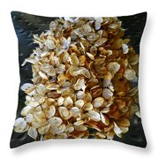 Beauty Of Old Throw Pillow