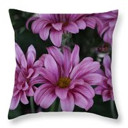 Beauty Of Pink Throw Pillow