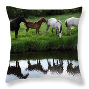 Beauty Of Place Throw Pillow