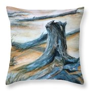 Beauty Of The Beach Throw Pillow
