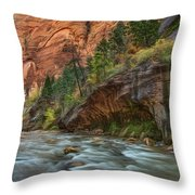 Beauty Of The Narrows Throw Pillow