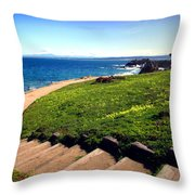 Beauty Of The Pacific Grove Shoreline Two Throw Pillow