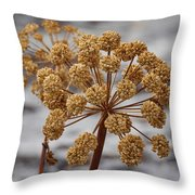 Beauty Of The Seeds Throw Pillow