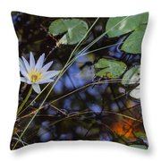 Beauty Of The Swamp Throw Pillow