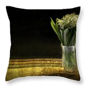 Beauty Of The Valley Throw Pillow