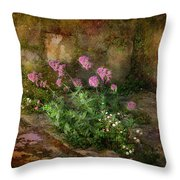 Beauty On An Old Stone Wall Throw Pillow