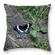 Beauty On The Dusty Path Throw Pillow