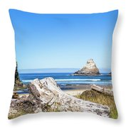 Beauty On The Pacific Coast Throw Pillow