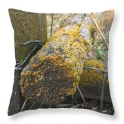 Beauty On The Ranch Throw Pillow