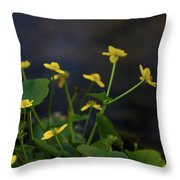 Beauty On The Waters Edge Throw Pillow