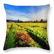 Beauty Over The Vineyard Throw Pillow