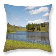 Beauty Swan Lake  Throw Pillow