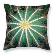 Beauty To The Point Throw Pillow