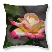 Beauty Unfolding Throw Pillow