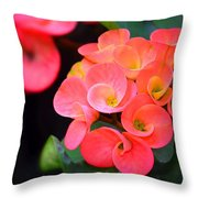 Beauty And Thorns Throw Pillow