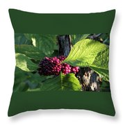 Beautyberry 2 Throw Pillow