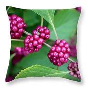 Beautyberry Bush Throw Pillow