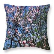 Beautiful Spring. Blooming Tree 2 Throw Pillow