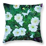 Beauyiful Petunias Throw Pillow