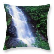 Beaver Brook Mount Moosilauke Throw Pillow