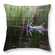 Beaver Carrying A Reed Throw Pillow