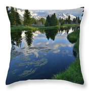 Beaver Dam At Schwabacher Landing Throw Pillow