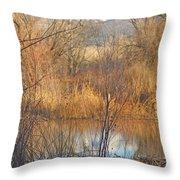 Beaver Dam At Sunset In Colorado            Throw Pillow