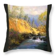 Beaver Dam Throw Pillow