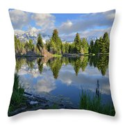Beaver Dam Reflection In Grand Teton Np Throw Pillow
