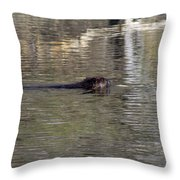 Beaver Glide Throw Pillow