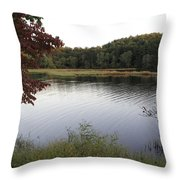 Beaver Lake With A Gentle Breeze Throw Pillow