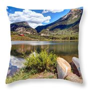 Beaver Lake Throw Pillow