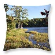 Beaver Lake Scenic View Throw Pillow