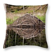 Beaver Lodge Reflection Throw Pillow