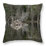 Beaver Lodge Reflections Throw Pillow