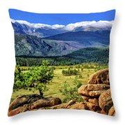 Beaver Meadows In Rocky Mountain National Park Throw Pillow